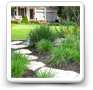 /Images/HCL-articles-small/xeriscaping.png